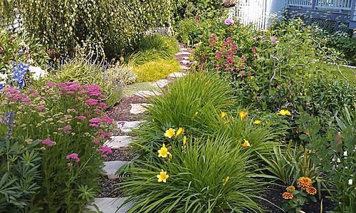 Judy8217s Garden