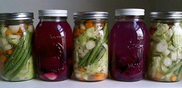 Image result for fermented vegetables