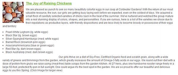 CWG Eggs