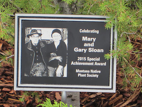 The plaque is permanent recognition of their volunteerism