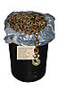 "Transport Binder Chain 5/16"" x 550' G70"