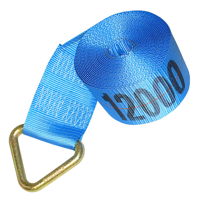 4 inch Blue Winch Strap with Delta Ring | RatchetStrapsUSA