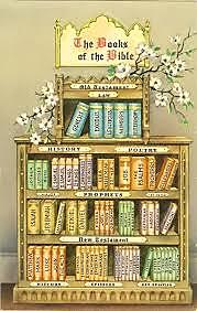 Bible Book Case