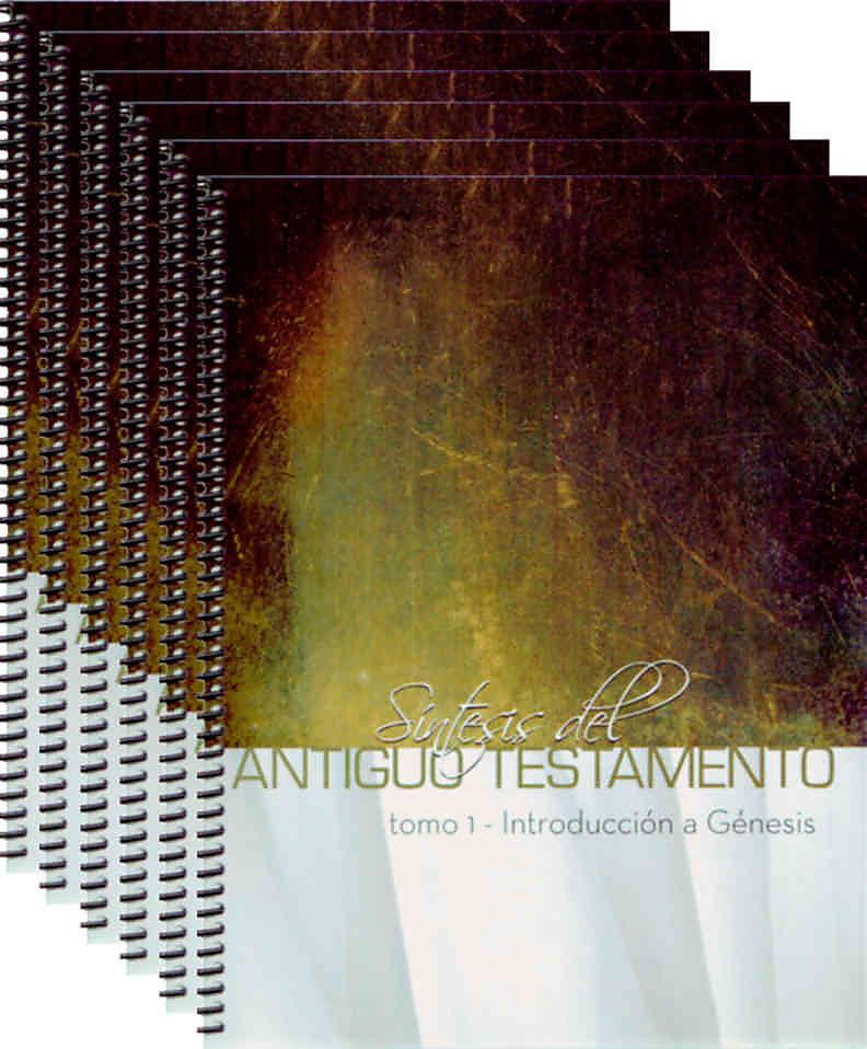Old Testament Survey (Spanish)