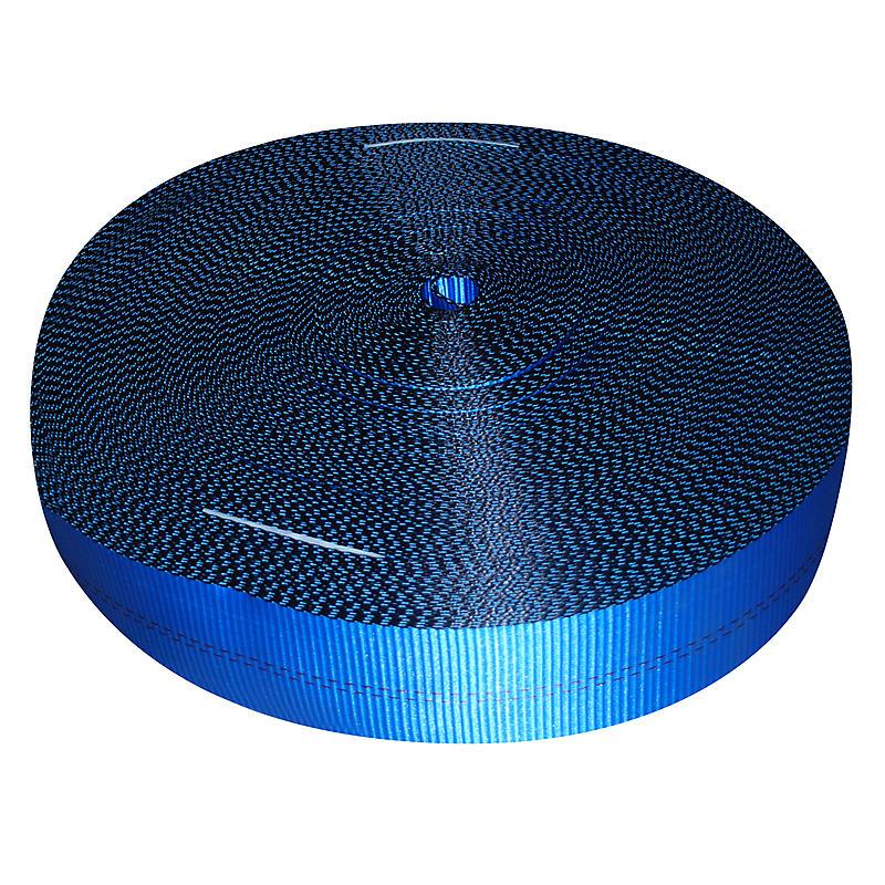 Blue Webbing