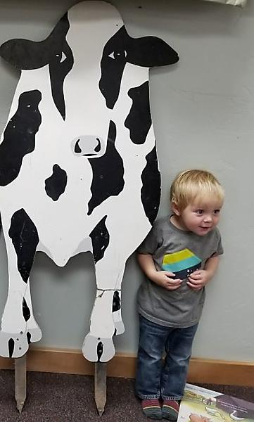 boy with large wooden cow cutout